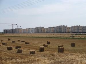Zalasewo (gmina Swarzędz) - nowe zagłębie mieszkaniowe
