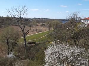 Działka z widokiem na las i jezioro