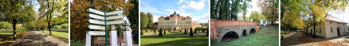 Pałac w Rogalinie - mozaika