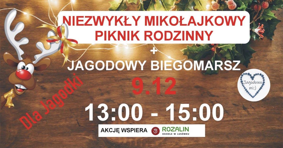 Piknik Mikołajkowy - Osiedle Rozalin w Lusówku